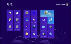 Bmw-Ista-d-rheingold-v3.47.10-expert-programming-software