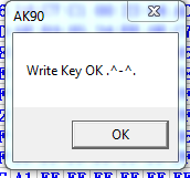 ak90-program-e46-key-24