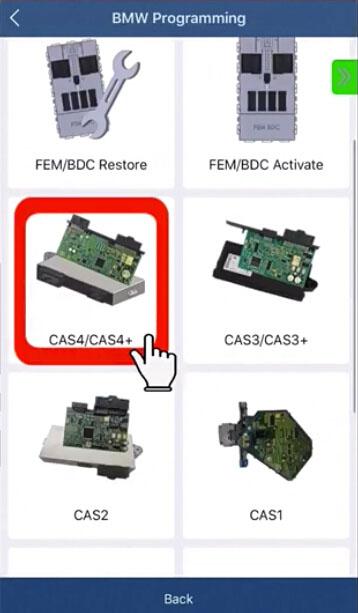 acdp-cas4-fem